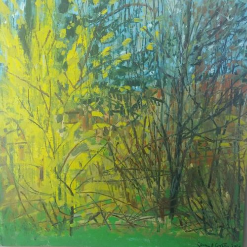 gerry-collins-ForsythiaView from my Studio-30x30oil on canvas